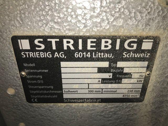 Scie à panneau vertical STRIEBIG type STANDARD II TRK 6220 A